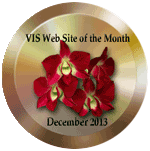 December 2013 VIS Website of the Month